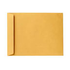 Brown Envelope 10x7 inch
