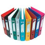 FIS PVC Box File F/S Broad
